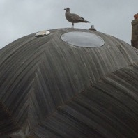Locals welcome Stephen Turner's Exbury Egg, Hastings, 2017